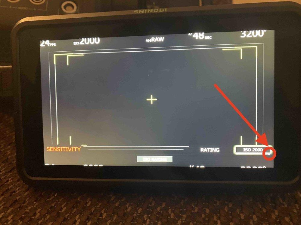 RED.Monitor.jpg